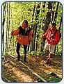 Anregungen vom Staffelsee, den Ferienwohnungen, zu Reise und Urlaub in Oberbayern, von Sauna, Dampfbad, Solarium, Whirlpool, Infrarotkabine. Bilder von Wanderzielen, Skigebieten, auch Klöstern und Schlössern wie Neuschwanstein und Linderhof, oder Fischerstechen, Fronleichnam, Wettersteingebirge, Karwendel, Berwanderung, Andechs, Bootsverleih, Blasmusik, Folklore und Skilauf.