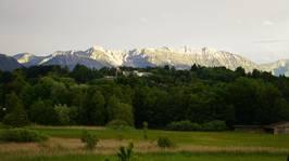 Estergebirge und Moos aus der FeWo