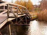 Brücke ins Moos
